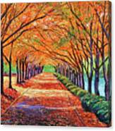 Autumn Tree Lane Canvas Print