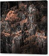 Autumn Trees Growing On Mountain Rocks Canvas Print