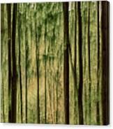 Autumn Trees, Scottish Borders Canvas Print