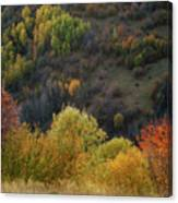 Autumn Valley Canvas Print