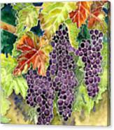 Autumn Vineyard In Its Glory - Batik Style Canvas Print