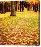 Autumn Walk In Spokane Canvas Print