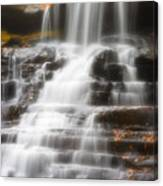 Autumn Waterfall II Canvas Print