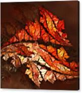 Autumn Wind Canvas Print