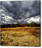 Autumn Winds Blow Canvas Print