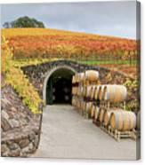 Autumn Wine Cave Canvas Print