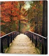 Autumn Woodland Crossing Canvas Print
