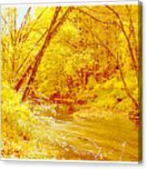Autumn Woodland Stream Pennsylvania Digital Art Canvas Print
