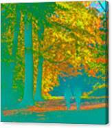 Autumn Woodland Walk Turquoise Canvas Print