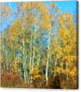 Autumn Woodlot Canvas Print