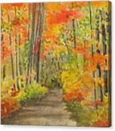 Autumn Woods Canvas Print