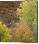 Autumn1 Canvas Print
