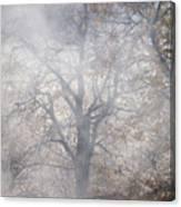 Autumn4 Canvas Print
