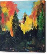 Autumnal Colors Canvas Print