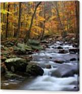 Autumnal Face Canvas Print