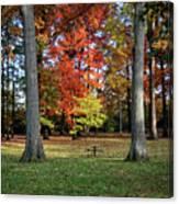 Autumnal Framework Canvas Print