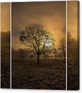 Autumnal Triptych. Canvas Print
