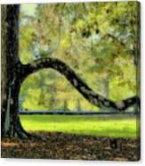 Autumns Bench Canvas Print