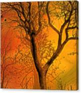 Autumn's Boundry Canvas Print