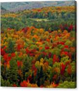 Autumns Colors Canvas Print