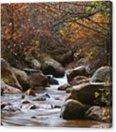 Autumns Flow Canvas Print
