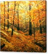 Autumns Hidden Sanctuary Canvas Print
