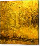 Autumn's Hidden Sanctuary IIi Canvas Print