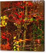 Autumns Looking Glass 2 Canvas Print