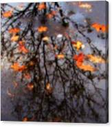 Autumns Looking Glass 3 Canvas Print