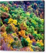 Autumn's Palette Canvas Print