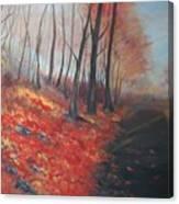 Autumns Pathway Canvas Print