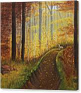 Autumn's Wooded Riverbed Canvas Print