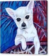 Ava Under The Palm's Canvas Print