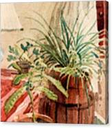 Avacado And Spider Plant Canvas Print