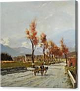 Avellino's Landscape  Canvas Print