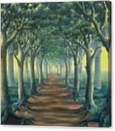 Avenue Of Enlightenment Canvas Print