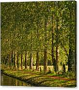 Avenue Of Trees On The Kennet And Avon Canal Canvas Print