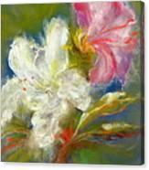 Azaelas Canvas Print