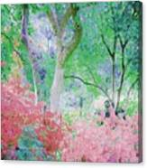 Azalea Flowers And Tree Coral  Canvas Print