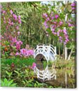 Azaleas And Bridge In Magnolia Lagoon Canvas Print