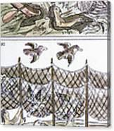 Aztec Fishermen Canvas Print