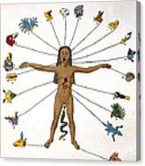 Aztec Zodiac Man, Medical Astrology Canvas Print