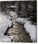 Babbling Brook, Early Spring, Lake Louise, Alberta Canvas Print