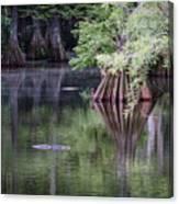 Babcock Wilderness Ranch - Peaceful Alligator Lake Canvas Print