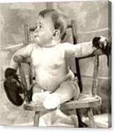 Baby Boxer Canvas Print