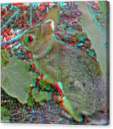 Baby Bunny - Use Red-cyan 3d Glasses Canvas Print