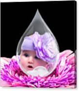 Baby Dewdrop Canvas Print