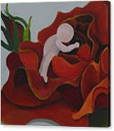 Baby In A Rose Canvas Print