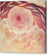 Baby Rose Canvas Print