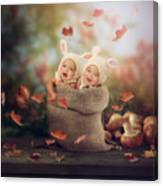 Baby Twins Canvas Print